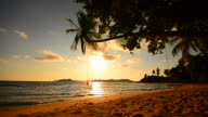 Beach on Tropical Island with Empty Swing at Sunset video