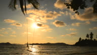 Beach on Tropical Island with the Swing at Sunset video