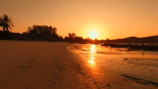 Beach on Tropical Islands at Sunrise Silhouette video