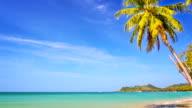 Beach panning video