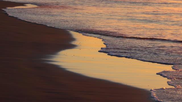 Beach sunrise video