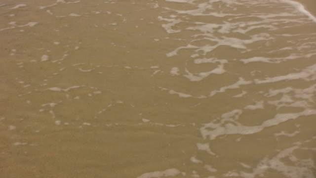 Beach Waves (HD) video