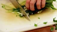 Bears garlic - Ramson chopping video