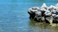 Beautiflul bay in the Florida Keys video