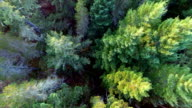 Beautiful Aerial Nature Flythroughs video