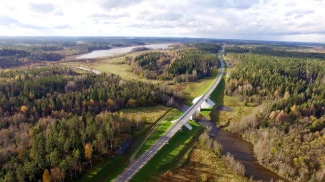 Beautiful aerial view of road bridge over the river surrounded by forest video