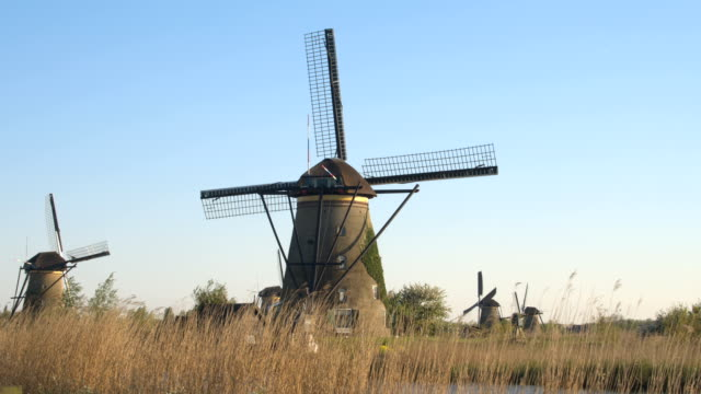 CLOSE UP: Beautiful antique Dutch mills on vast dried grassy field next to river video