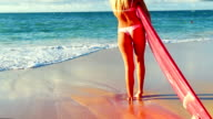 Beautiful Attractive Young Blonde Girl in Small Bikini with Surfboard video
