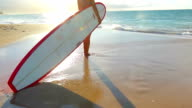 Beautiful Attractive Young Hawaiian Girl at the Beach with Surfboard video