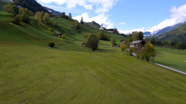 AERIAL: Beautiful Austrian countryside video