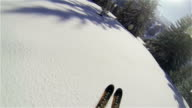 Beautiful POV Backcountry skiing through trees video