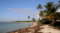 Beautiful Beach 1 video