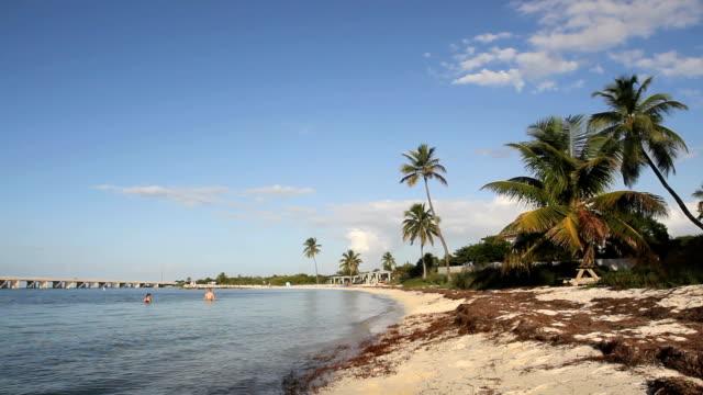 Beautiful Beach 2 video