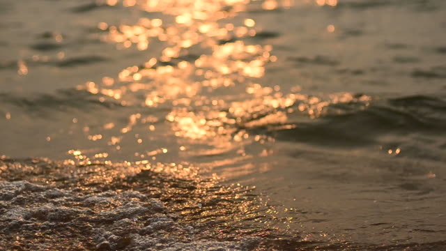 Beautiful beach and tropical sea video
