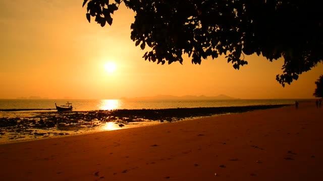 Beautiful Beach at Sunrise Silhouette video