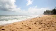 Beautiful beach in summer time in Sri Lanka video