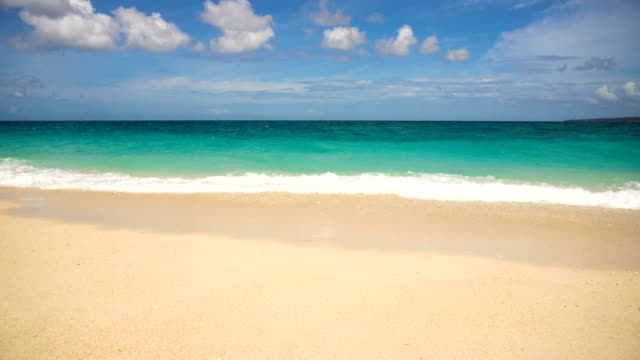 Beautiful beach on tropical island video
