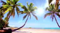 Beautiful Beach video