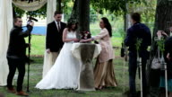 Beautiful bride signing marriage license video