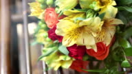 Beautiful bright flowers in lovely bouquet video