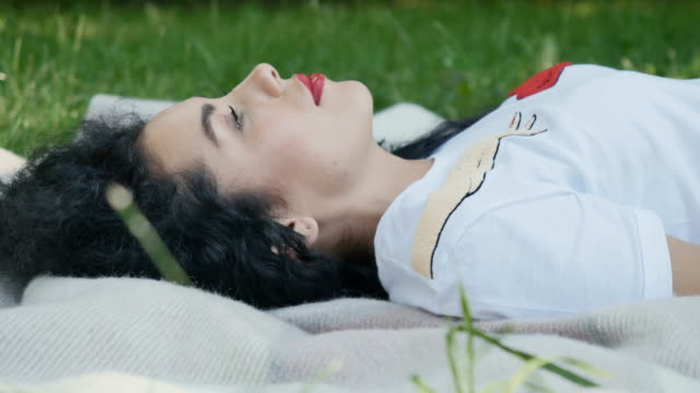 Beautiful brunette lays on plaid in park and smiles video