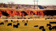 Beautiful Butte Livestock Ranch Thermopolis Wyoming Western USA video