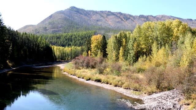 Beautiful Calm Mountain River video