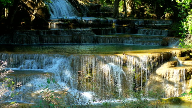 Beautiful cascade step of waterfall with green forest. video
