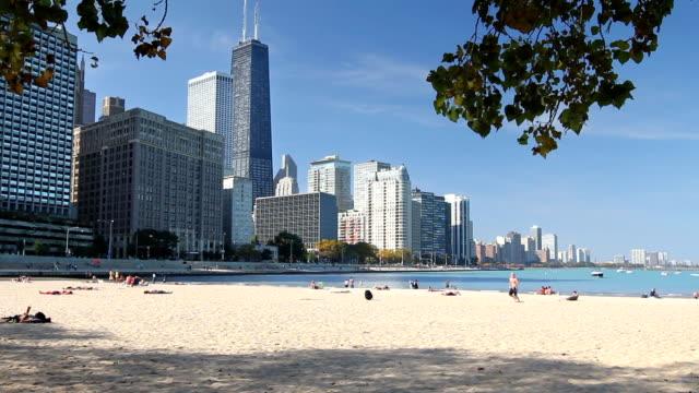 Beautiful Chicago Beach video