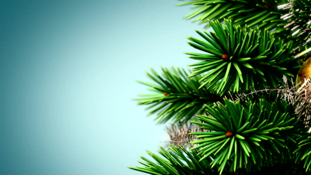 beautiful Christmas tree background video