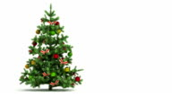 Beautiful Christmas tree looped on white background. video
