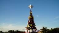 Beautiful Christmas Tree video