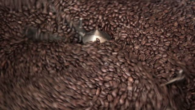 Beautiful Coffee Beans video