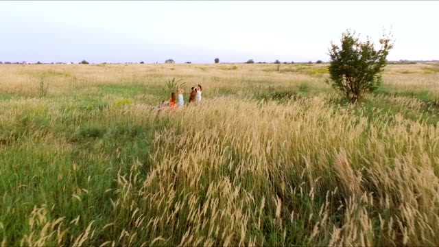 beautiful dancing girl in the field - the guys playing the guitar - aerial video