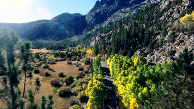 Beautiful drone shot following a car on a lonesome road in the California mountains as the trees are changing colors. video