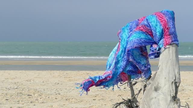 beautiful fabric on dry log on beach video