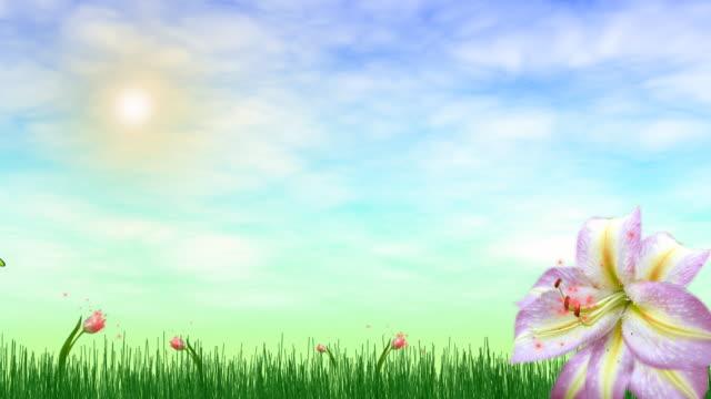 Beautiful Fairy Nature video