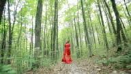 Beautiful Fairy Tale Girl Running In Woods video