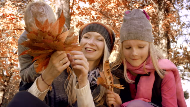 Beautiful family in autumn park video