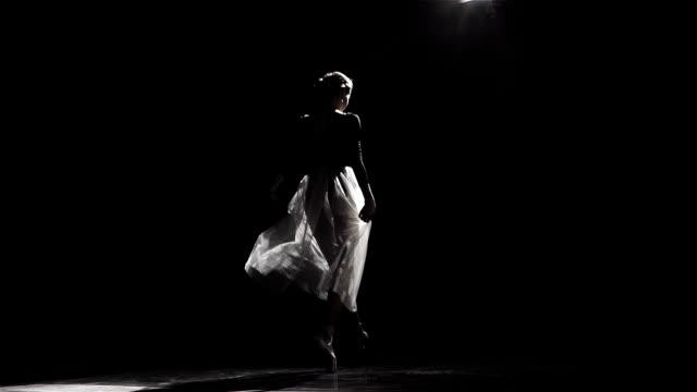 Beautiful Female Ballet Dancer video