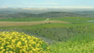 Beautiful field with flowers, hills, amazing landscape panorama, natural beauty video