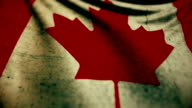 Beautiful flag of the Canada waving in the wind video