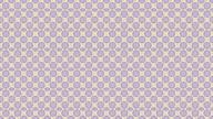 Beautiful floral kaleidoscopic pattern. video