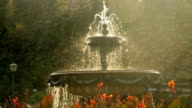 Beautiful fountain in city park, Baroque architecture Vienna sun. Beautiful shot of Europe, culture and landscapes. Traveling sightseeing, tourist views landmarks of Austria. World travel, west European trip cityscape, outdoor shot video