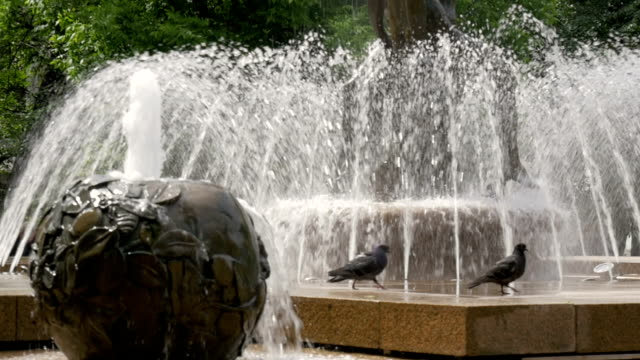Beautiful fountain in the city park. The sun illuminates the splashes of water. Shining splash of water. Close up video