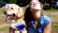 Beautiful girl brushing or grooming her golden retriever dog outdoors video