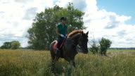 Beautiful girl riding a horse in countryside video