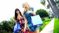 Beautiful Girls on a Shopping Day Rodeo Drive video