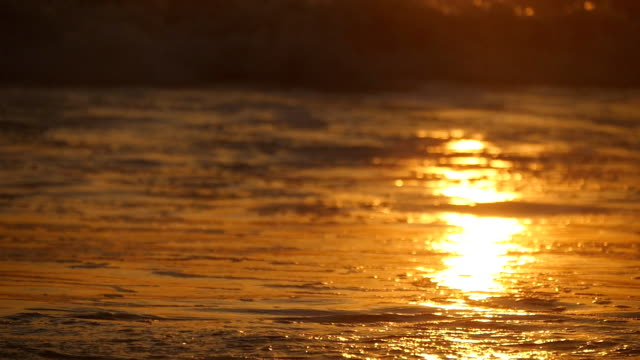 Beautiful golden ocean waves on sunset. Orange sunrise reflected at the sea water. Tide with waves splashes on a windy day at evening. Nature background Close up Slow motion video
