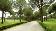 Beautiful golf course. The camera in movement video